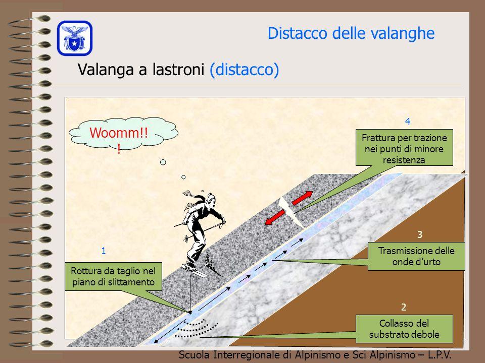 Scuola Interregionale di Alpinismo e Sci Alpinismo – L.P.V. Valanghe di neve incoerente La valanga riprodotta in questo filmato è una tipica colata di
