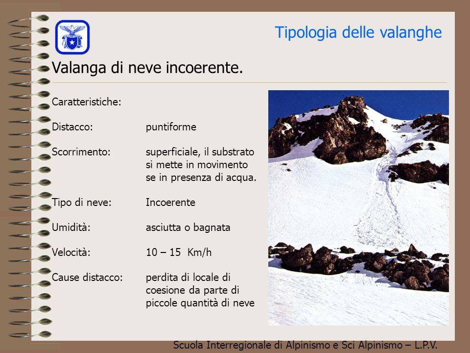 Scuola Interregionale di Alpinismo e Sci Alpinismo – L.P.V. Tipologia delle valanghe Descrizione Le valanghe che verranno trattate in questa lezione,