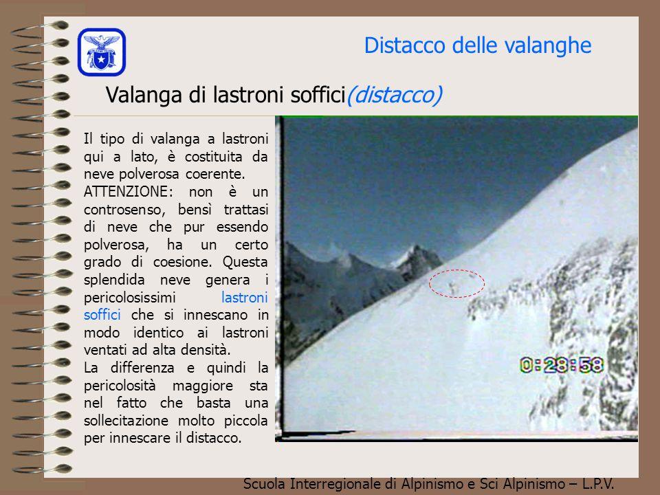 Scuola Interregionale di Alpinismo e Sci Alpinismo – L.P.V. Valanga polverosa con sviluppo nubiforme E' questo un tipo di valanga decisamente di dimen