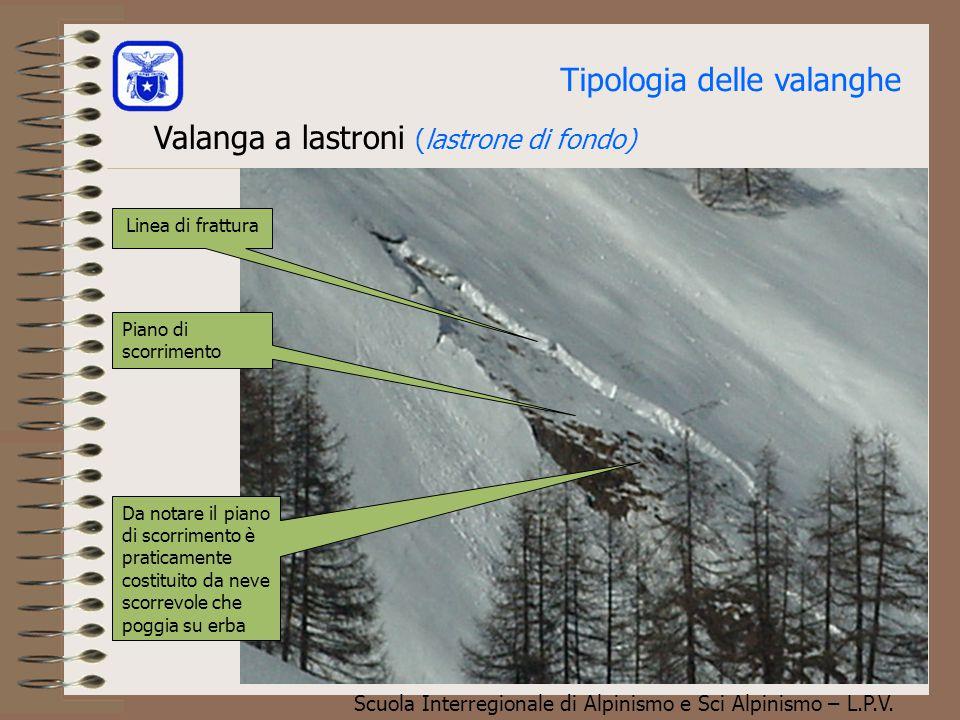Scuola Interregionale di Alpinismo e Sci Alpinismo – L.P.V. Tipologia delle valanghe Valanga a lastroni (lastrone di superficie) Linea di frattura Pia