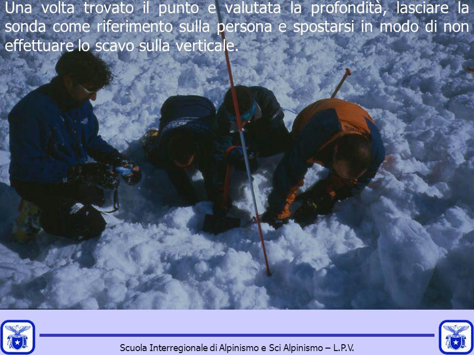 Scuola Interregionale di Alpinismo e Sci Alpinismo – L.P.V. Una volta trovato il punto e valutata la profondità, lasciare la sonda come riferimento su