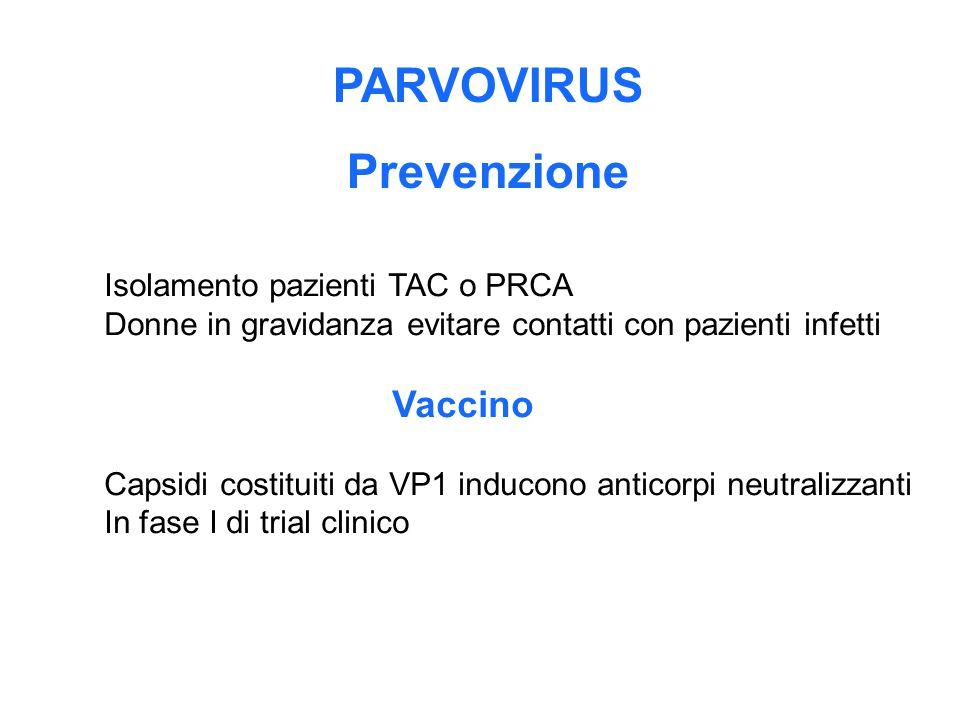 PARVOVIRUS Prevenzione Isolamento pazienti TAC o PRCA Donne in gravidanza evitare contatti con pazienti infetti Vaccino Capsidi costituiti da VP1 indu
