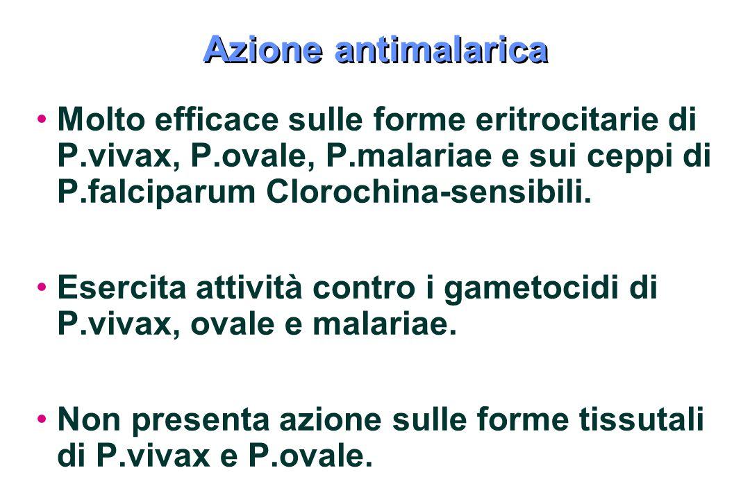 Azione antimalarica Molto efficace sulle forme eritrocitarie di P.vivax, P.ovale, P.malariae e sui ceppi di P.falciparum Clorochina-sensibili.
