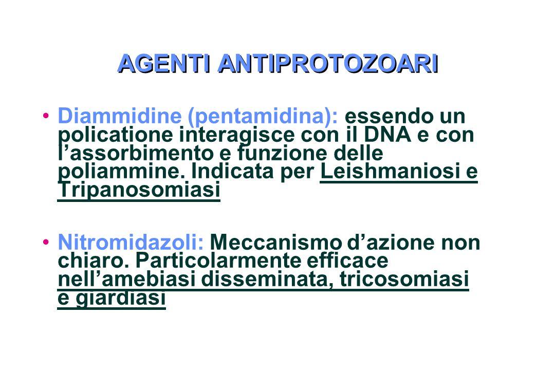 AGENTI ANTIPROTOZOARI Diammidine (pentamidina): essendo un policatione interagisce con il DNA e con l'assorbimento e funzione delle poliammine.