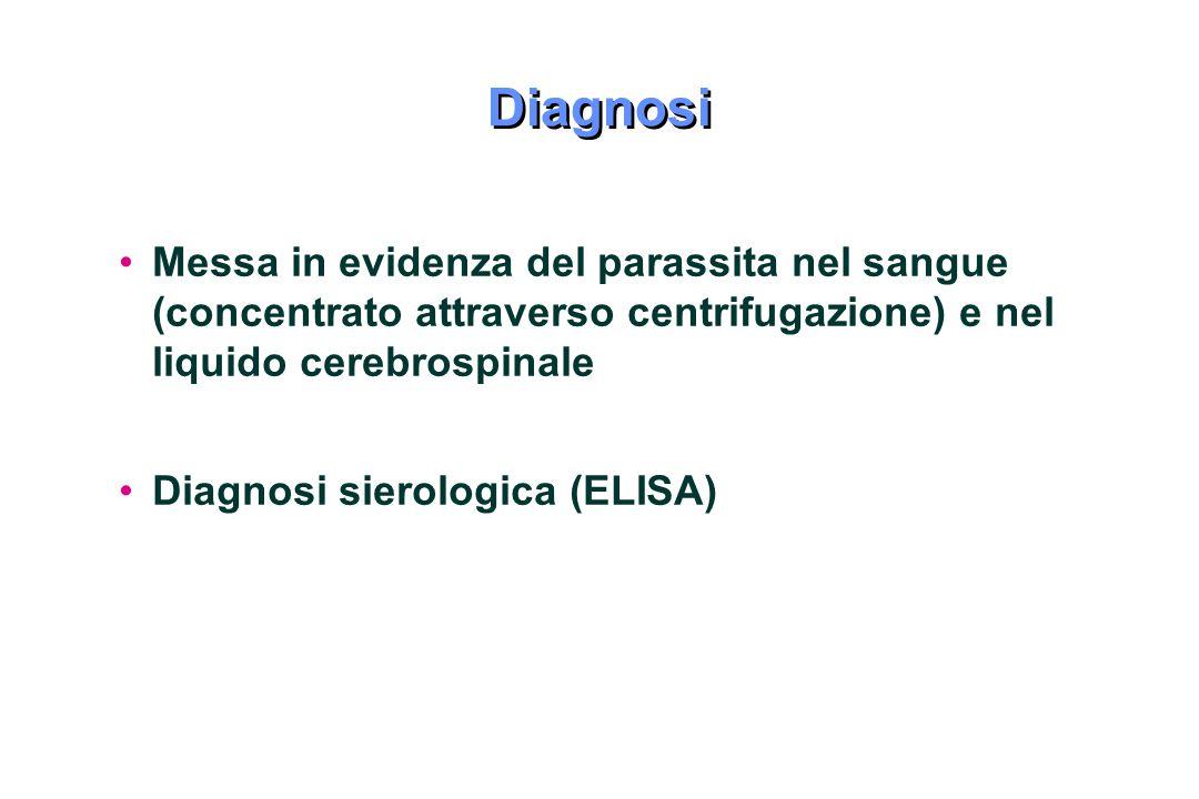Diagnosi Messa in evidenza del parassita nel sangue (concentrato attraverso centrifugazione) e nel liquido cerebrospinale Diagnosi sierologica (ELISA)