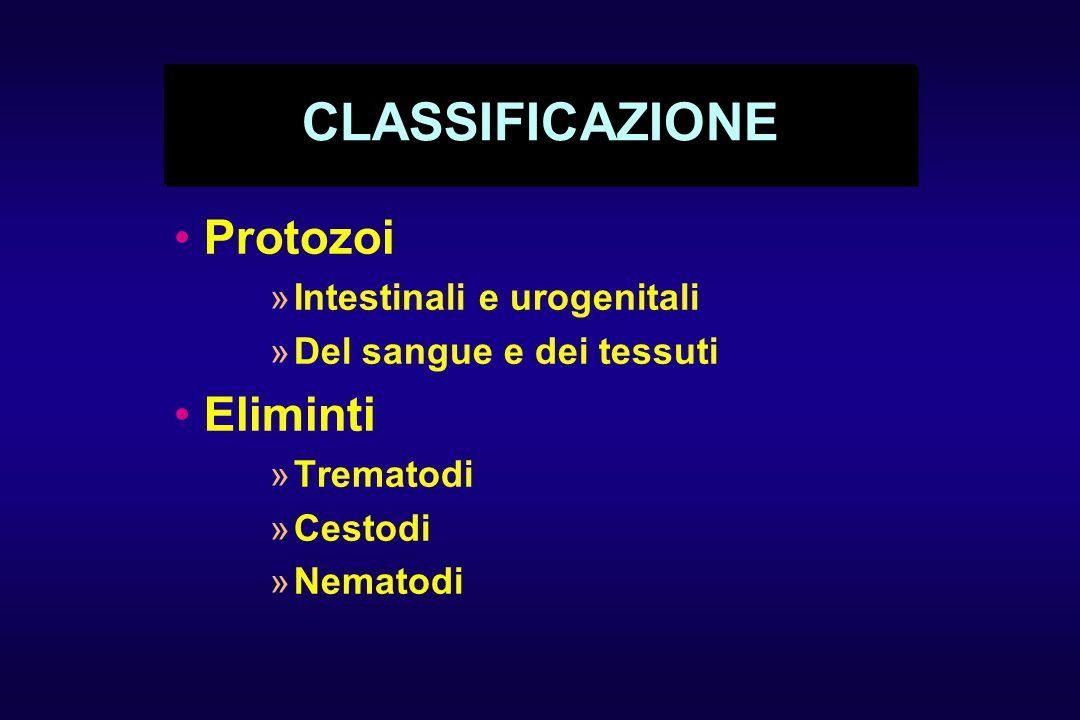 CLASSIFICAZIONE Protozoi »Intestinali e urogenitali »Del sangue e dei tessuti Eliminti »Trematodi »Cestodi »Nematodi