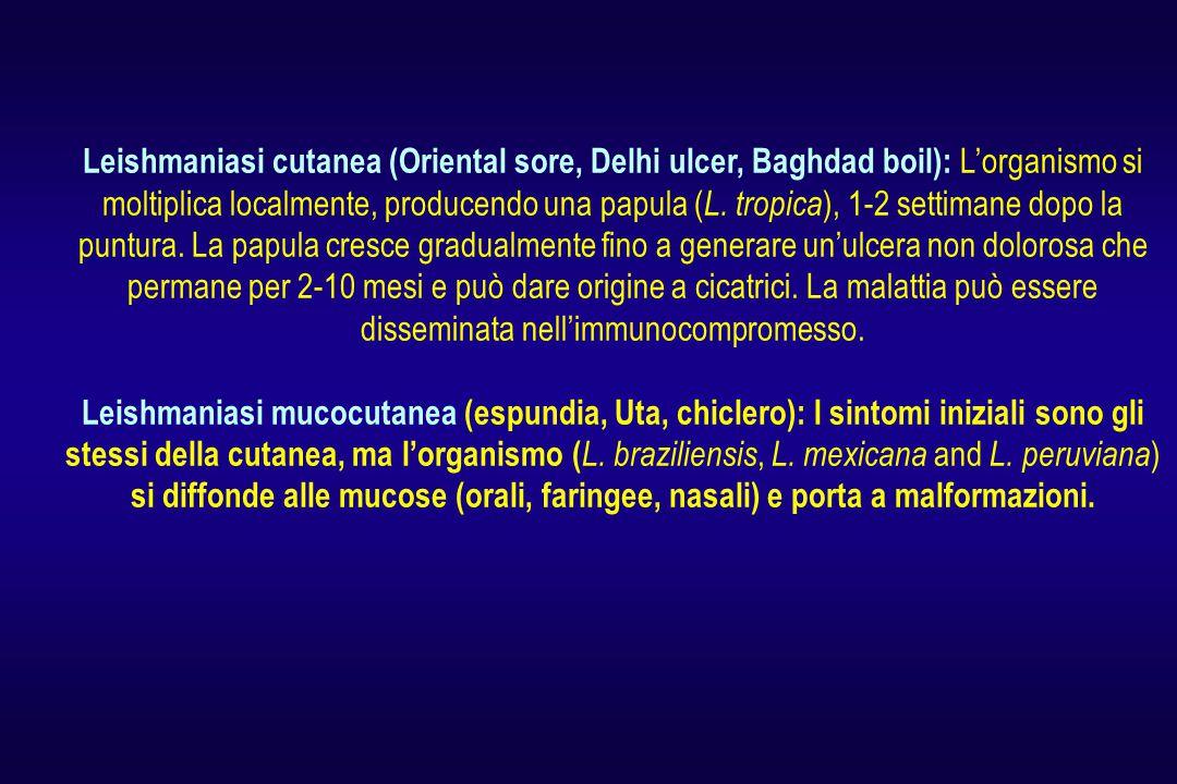 Leishmaniasi cutanea (Oriental sore, Delhi ulcer, Baghdad boil): L'organismo si moltiplica localmente, producendo una papula ( L.