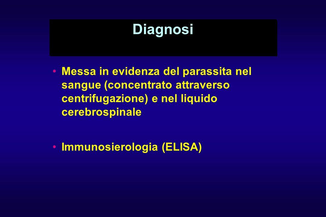 Diagnosi Messa in evidenza del parassita nel sangue (concentrato attraverso centrifugazione) e nel liquido cerebrospinale Immunosierologia (ELISA)