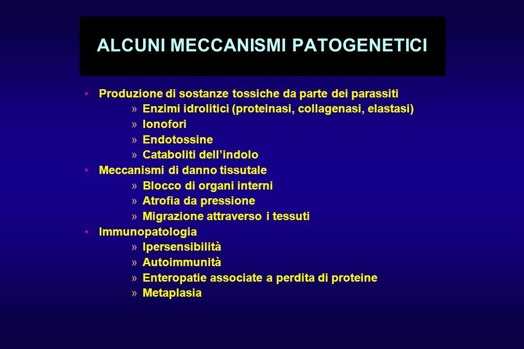 ALCUNI MECCANISMI PATOGENETICI Produzione di sostanze tossiche da parte dei parassiti »Enzimi idrolitici (proteinasi, collagenasi, elastasi) »Ionofori »Endotossine »Cataboliti dell'indolo Meccanismi di danno tissutale »Blocco di organi interni »Atrofia da pressione »Migrazione attraverso i tessuti Immunopatologia »Ipersensibilità »Autoimmunità »Enteropatie associate a perdita di proteine »Metaplasia