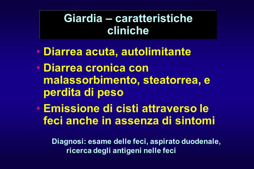 Giardia – caratteristiche cliniche Diarrea acuta, autolimitante Diarrea cronica con malassorbimento, steatorrea, e perdita di peso Emissione di cisti