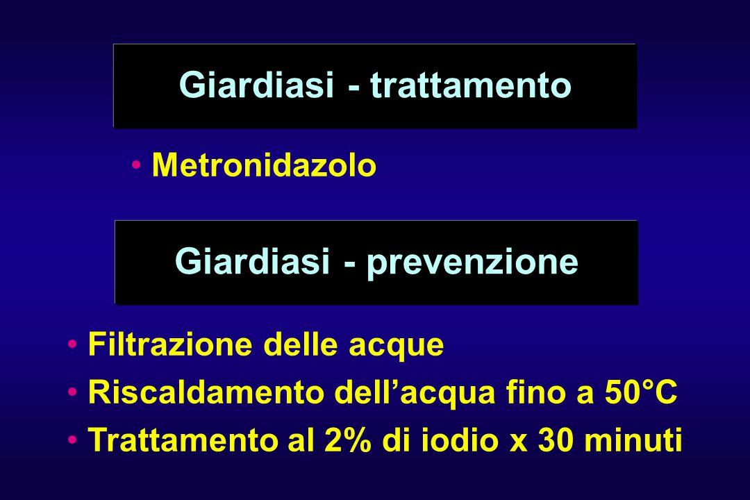 Giardiasi - trattamento Metronidazolo Giardiasi - prevenzione Filtrazione delle acque Riscaldamento dell'acqua fino a 50°C Trattamento al 2% di iodio x 30 minuti