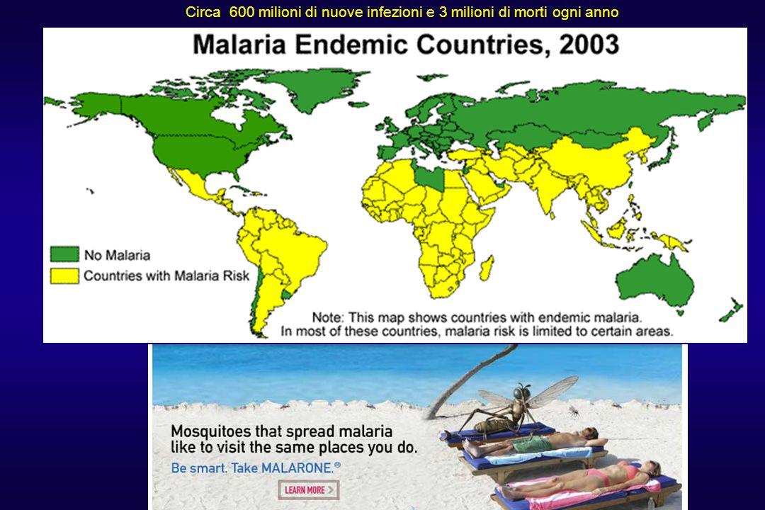 Circa 600 milioni di nuove infezioni e 3 milioni di morti ogni anno