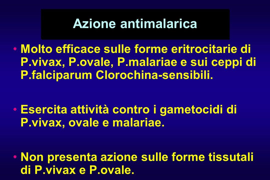 Azione antimalarica Molto efficace sulle forme eritrocitarie di P.vivax, P.ovale, P.malariae e sui ceppi di P.falciparum Clorochina-sensibili. Esercit