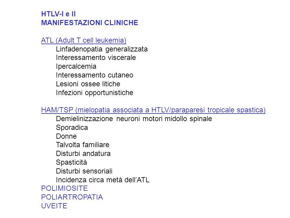HTLV-I e II MANIFESTAZIONI CLINICHE ATL (Adult T cell leukemia) Linfadenopatia generalizzata Interessamento viscerale Ipercalcemia Interessamento cutaneo Lesioni ossee litiche Infezioni opportunistiche HAM/TSP (mielopatia associata a HTLV/paraparesi tropicale spastica) Demielinizzazione neuroni motori midollo spinale Sporadica Donne Talvolta familiare Disturbi andatura Spasticità Disturbi sensoriali Incidenza circa metà dell'ATL POLIMIOSITE POLIARTROPATIA UVEITE