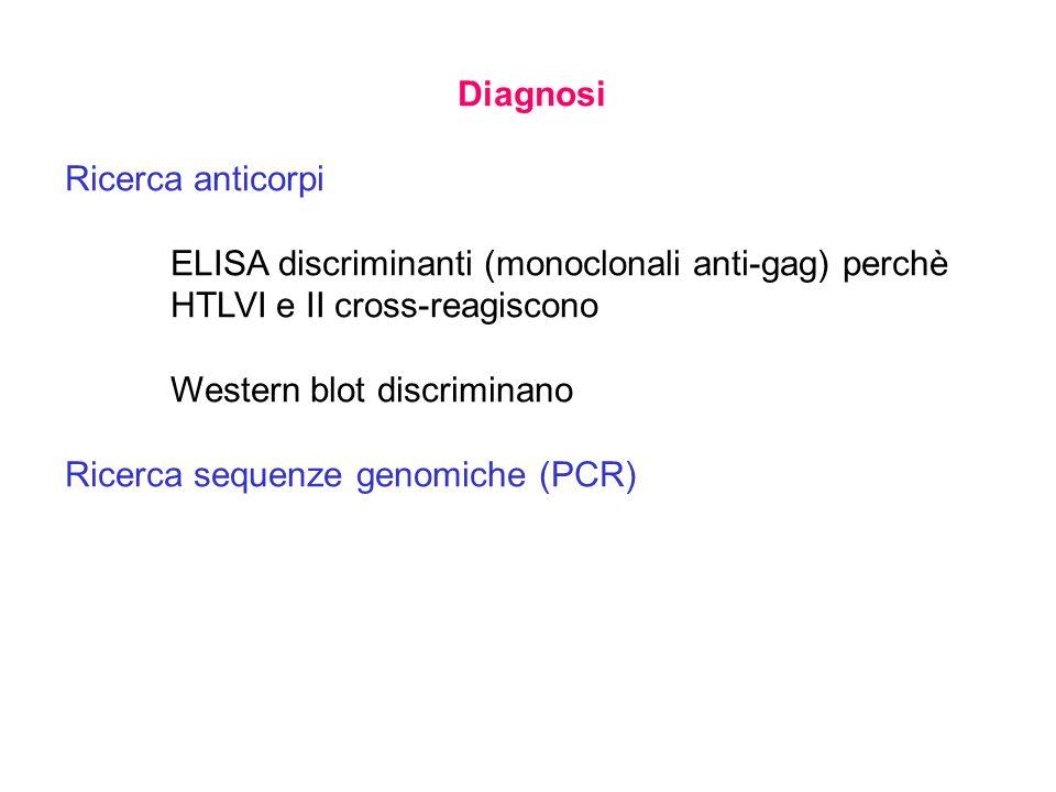 Diagnosi Ricerca anticorpi ELISA discriminanti (monoclonali anti-gag) perchè HTLVIe II cross-reagiscono Western blot discriminano Ricerca sequenze genomiche (PCR)