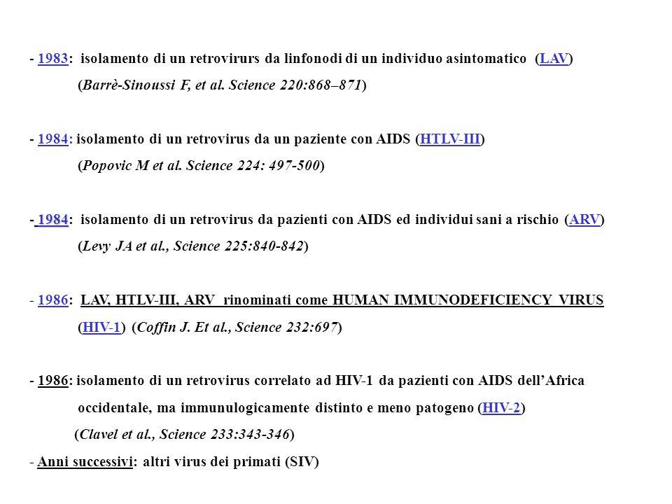 - 1983: isolamento di un retrovirurs da linfonodi di un individuo asintomatico (LAV) (Barrè-Sinoussi F, et al.