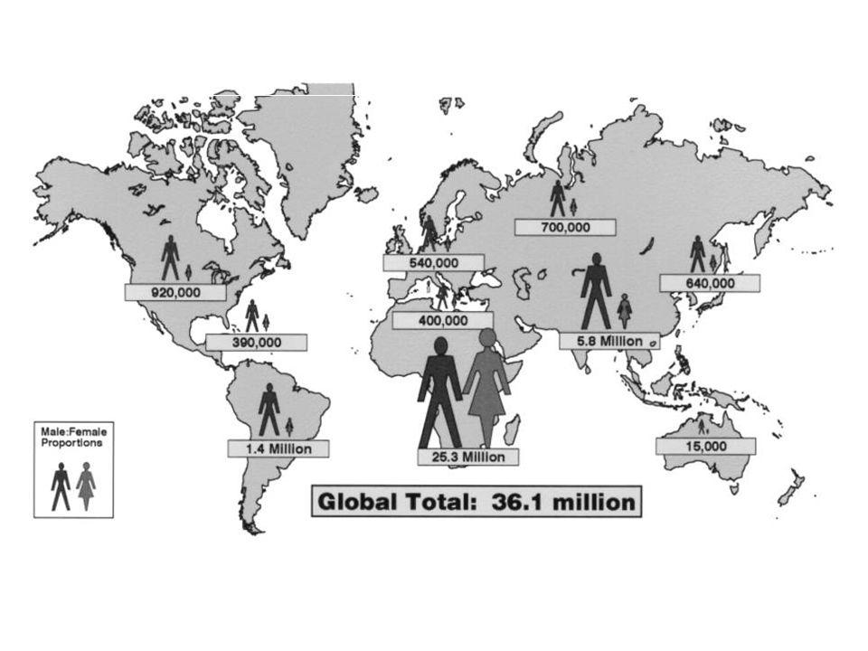 Numero stimato alla fine del 2000 di individui infettati