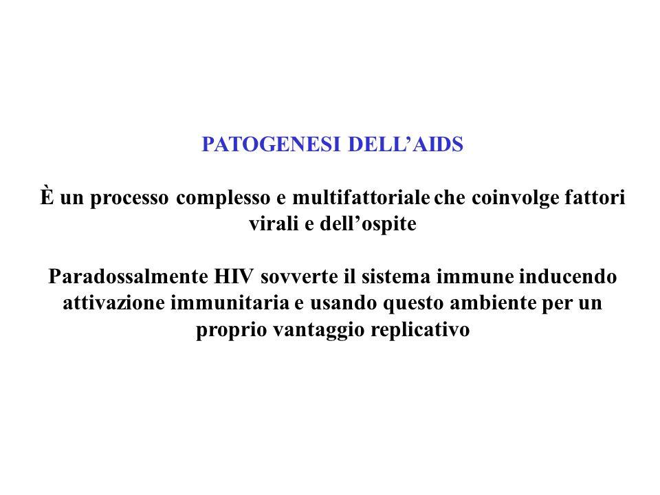 PATOGENESI DELL'AIDS È un processo complesso e multifattoriale che coinvolge fattori virali e dell'ospite Paradossalmente HIV sovverte il sistema immune inducendo attivazione immunitaria e usando questo ambiente per un proprio vantaggio replicativo