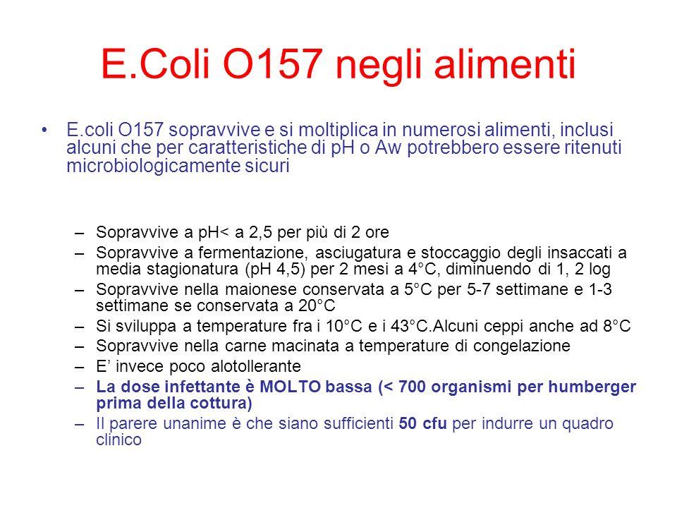 E.Coli O157 negli alimenti E.coli O157 sopravvive e si moltiplica in numerosi alimenti, inclusi alcuni che per caratteristiche di pH o Aw potrebbero essere ritenuti microbiologicamente sicuri –Sopravvive a pH< a 2,5 per più di 2 ore –Sopravvive a fermentazione, asciugatura e stoccaggio degli insaccati a media stagionatura (pH 4,5) per 2 mesi a 4°C, diminuendo di 1, 2 log –Sopravvive nella maionese conservata a 5°C per 5-7 settimane e 1-3 settimane se conservata a 20°C –Si sviluppa a temperature fra i 10°C e i 43°C.Alcuni ceppi anche ad 8°C –Sopravvive nella carne macinata a temperature di congelazione –E' invece poco alotollerante –La dose infettante è MOLTO bassa (< 700 organismi per humberger prima della cottura) –Il parere unanime è che siano sufficienti 50 cfu per indurre un quadro clinico