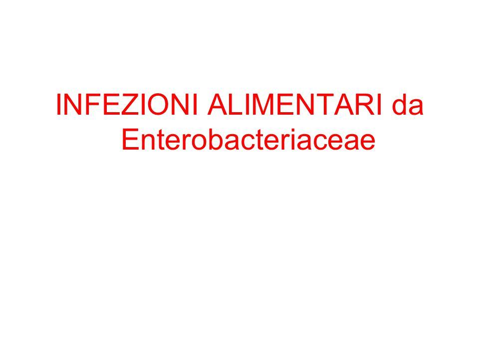 Infezioni primitivamente ed esclusivamente intestinali Enteriti da enterobatteri fanno parte di una vasta gamma di sindromi morbose ad eziologia multipla I principali sintomi sono DIARREA (emissione di materiale fecale a frequenza e liquidità anormale ed elevata) e/o DISSENTERIA (processo infiammatorio della mucosa del colon accompagnato da tenesmo, dolori addominali ed emissione di muco e/o sangue con le feci)