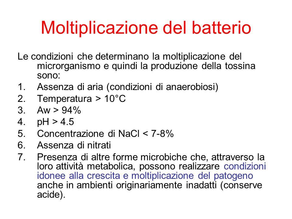 Moltiplicazione del batterio Le condizioni che determinano la moltiplicazione del microrganismo e quindi la produzione della tossina sono: 1.Assenza di aria (condizioni di anaerobiosi) 2.Temperatura > 10°C 3.Aw > 94% 4.pH > 4.5 5.Concentrazione di NaCl < 7-8% 6.Assenza di nitrati 7.Presenza di altre forme microbiche che, attraverso la loro attività metabolica, possono realizzare condizioni idonee alla crescita e moltiplicazione del patogeno anche in ambienti originariamente inadatti (conserve acide).