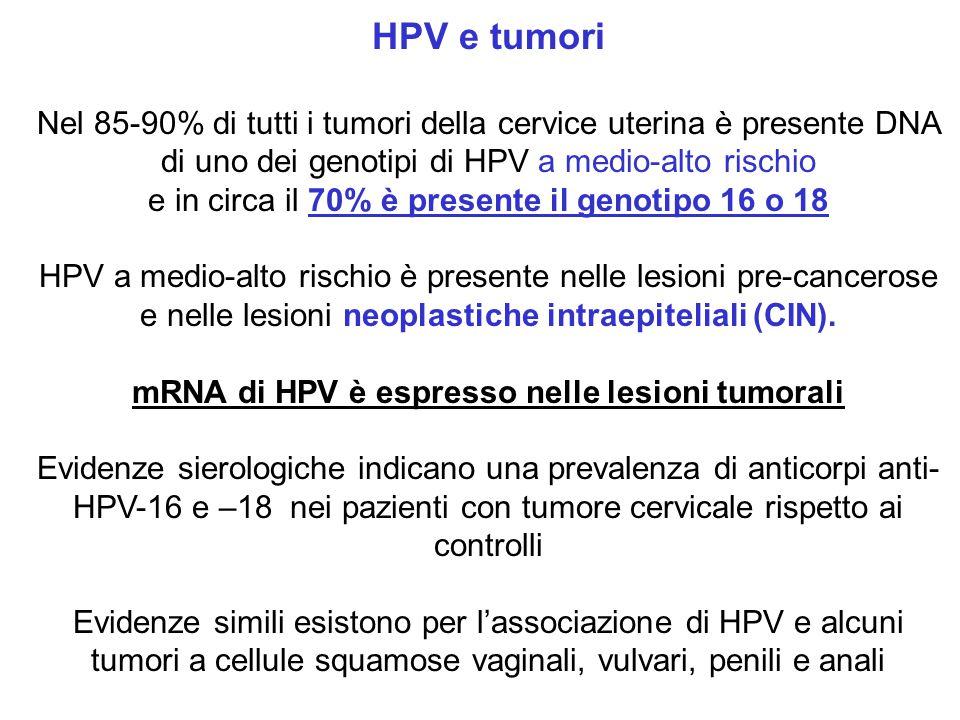 HPV e tumori Nel 85-90% di tutti i tumori della cervice uterina è presente DNA di uno dei genotipi di HPV a medio-alto rischio e in circa il 70% è pre