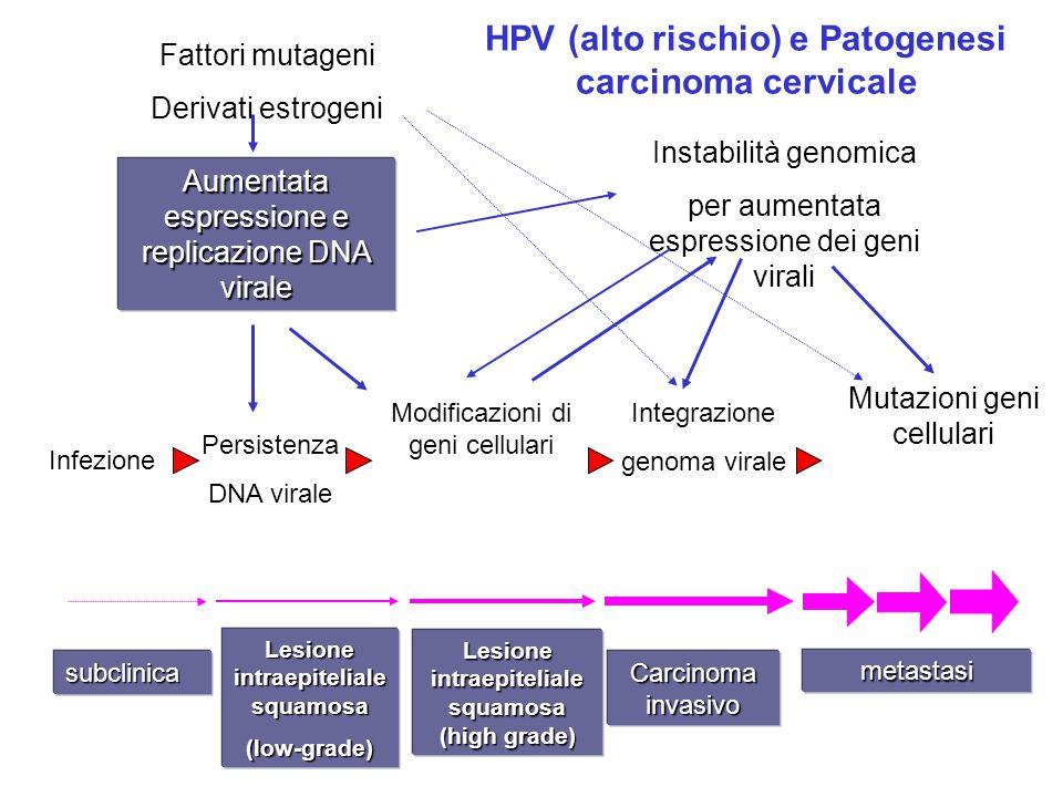 subclinica Lesione intraepiteliale squamosa (low-grade) Lesione intraepiteliale squamosa (high grade) Carcinoma invasivo metastasi Fattori mutageni De