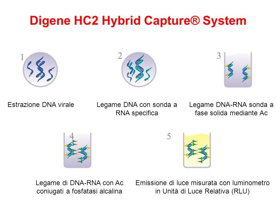 Estrazione DNA viraleLegame DNA con sonda a RNA specifica Legame DNA-RNA sonda a fase solida mediante Ac Digene HC2 Hybrid Capture® System Legame di D
