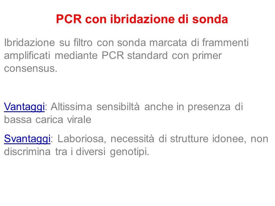 PCR con ibridazione di sonda Ibridazione su filtro con sonda marcata di frammenti amplificati mediante PCR standard con primer consensus. Vantaggi: Al