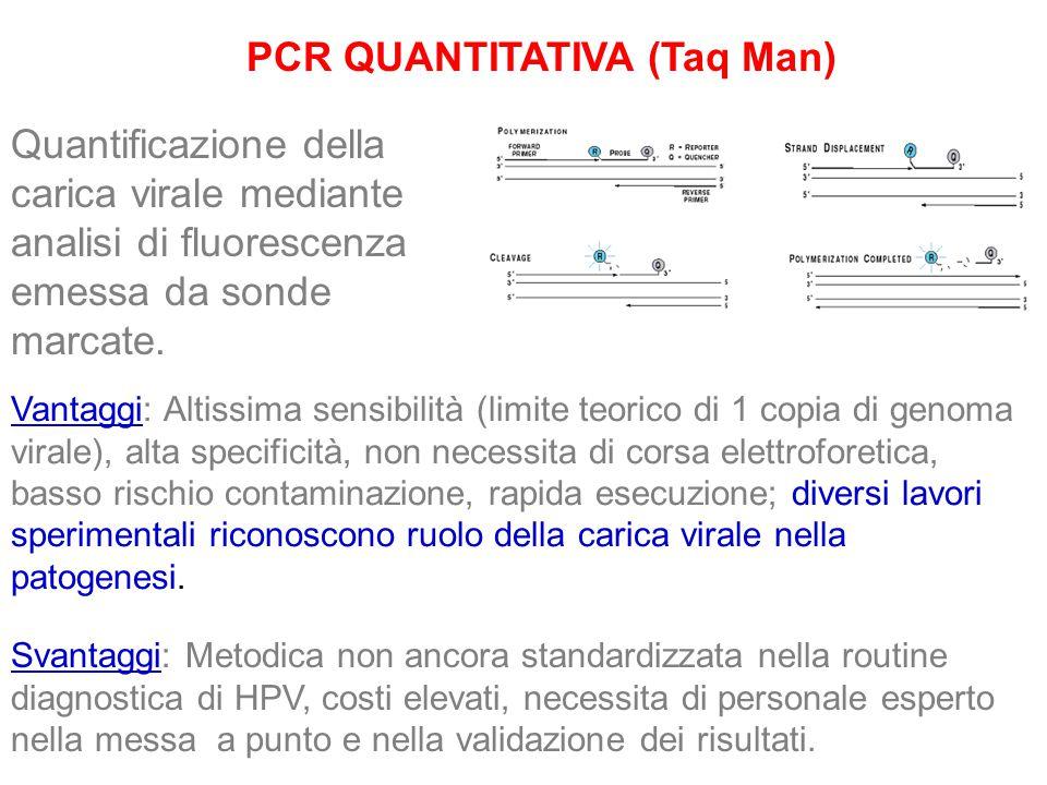 PCR QUANTITATIVA (Taq Man) Quantificazione della carica virale mediante analisi di fluorescenza emessa da sonde marcate. Vantaggi: Altissima sensibili