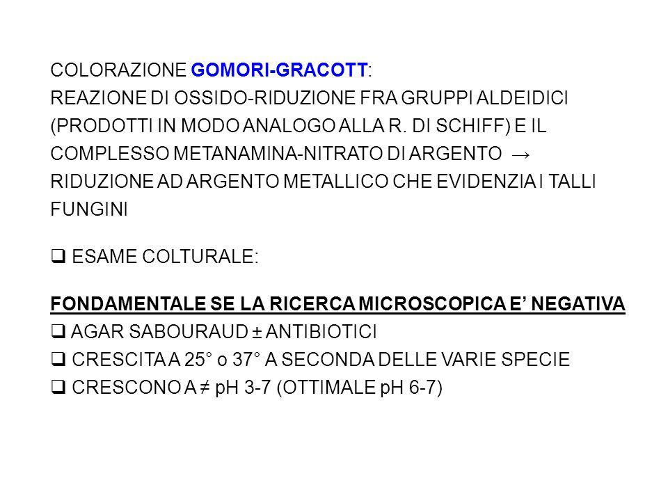COLORAZIONE GOMORI-GRACOTT: REAZIONE DI OSSIDO-RIDUZIONE FRA GRUPPI ALDEIDICI (PRODOTTI IN MODO ANALOGO ALLA R.