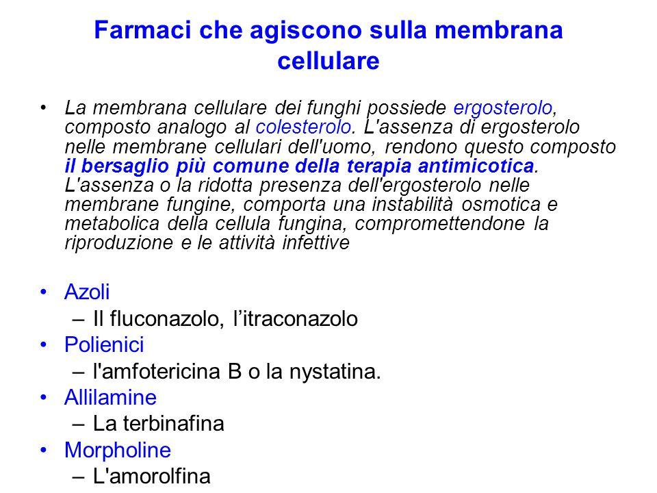 Farmaci che agiscono sulla membrana cellulare La membrana cellulare dei funghi possiede ergosterolo, composto analogo al colesterolo.