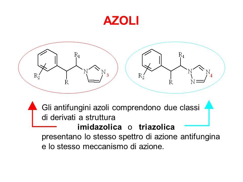 Gli antifungini azoli comprendono due classi di derivati a struttura imidazolica o triazolica presentano lo stesso spettro di azione antifungina e lo stesso meccanismo di azione.