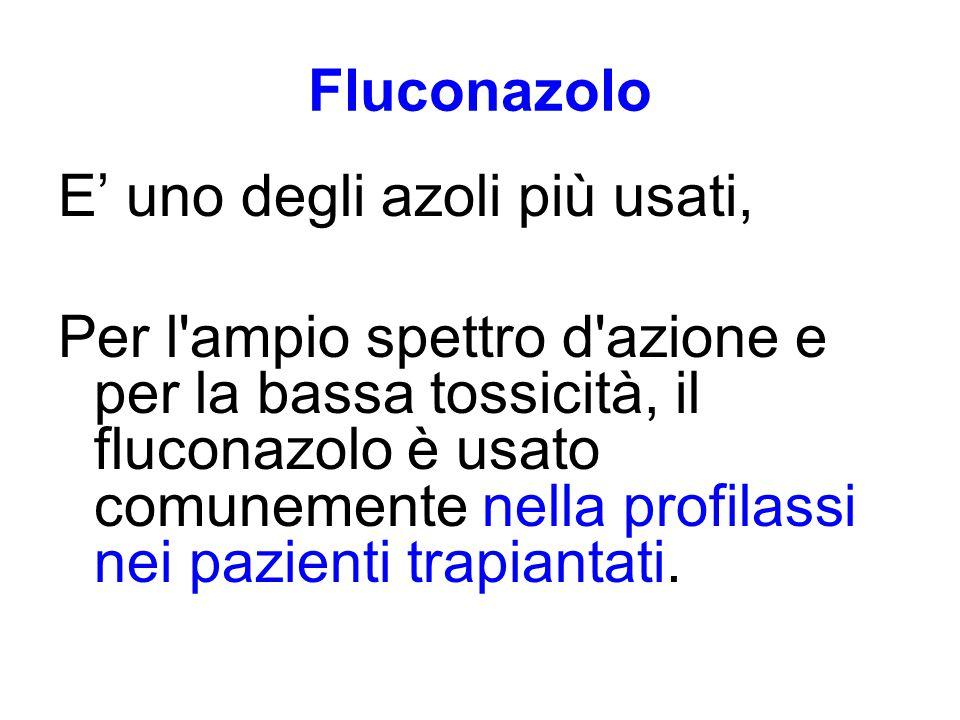 Fluconazolo E' uno degli azoli più usati, Per l ampio spettro d azione e per la bassa tossicità, il fluconazolo è usato comunemente nella profilassi nei pazienti trapiantati.