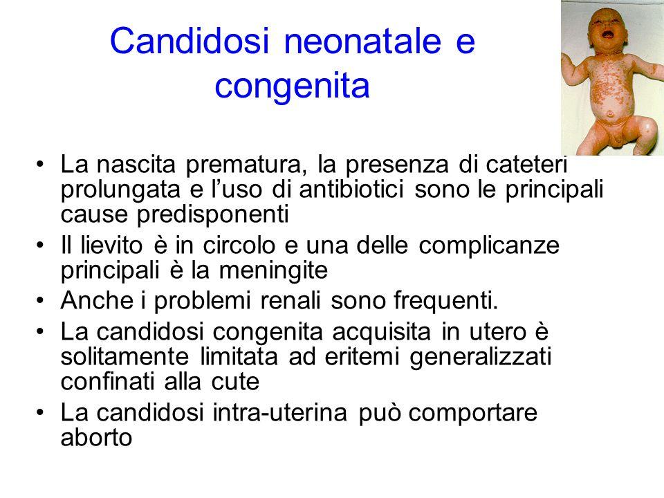 Candidosi neonatale e congenita La nascita prematura, la presenza di cateteri prolungata e l'uso di antibiotici sono le principali cause predisponenti