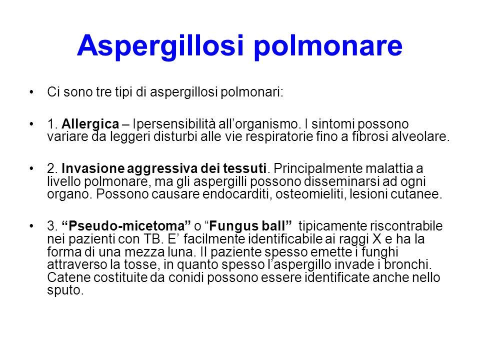 Aspergillosi polmonare Ci sono tre tipi di aspergillosi polmonari: 1. Allergica – Ipersensibilità all'organismo. I sintomi possono variare da leggeri