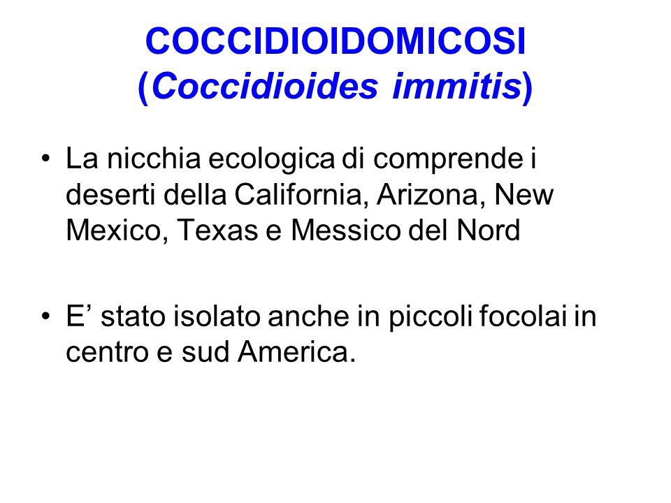 COCCIDIOIDOMICOSI (Coccidioides immitis) La nicchia ecologica di comprende i deserti della California, Arizona, New Mexico, Texas e Messico del Nord E
