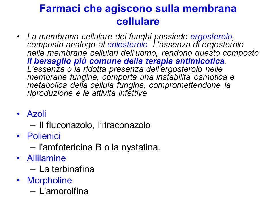 Farmaci che agiscono sulla membrana cellulare La membrana cellulare dei funghi possiede ergosterolo, composto analogo al colesterolo. L'assenza di erg