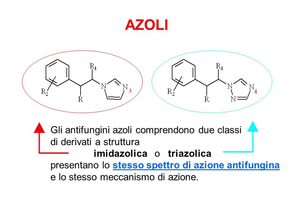 Gli antifungini azoli comprendono due classi di derivati a struttura imidazolica o triazolica presentano lo stesso spettro di azione antifungina e lo