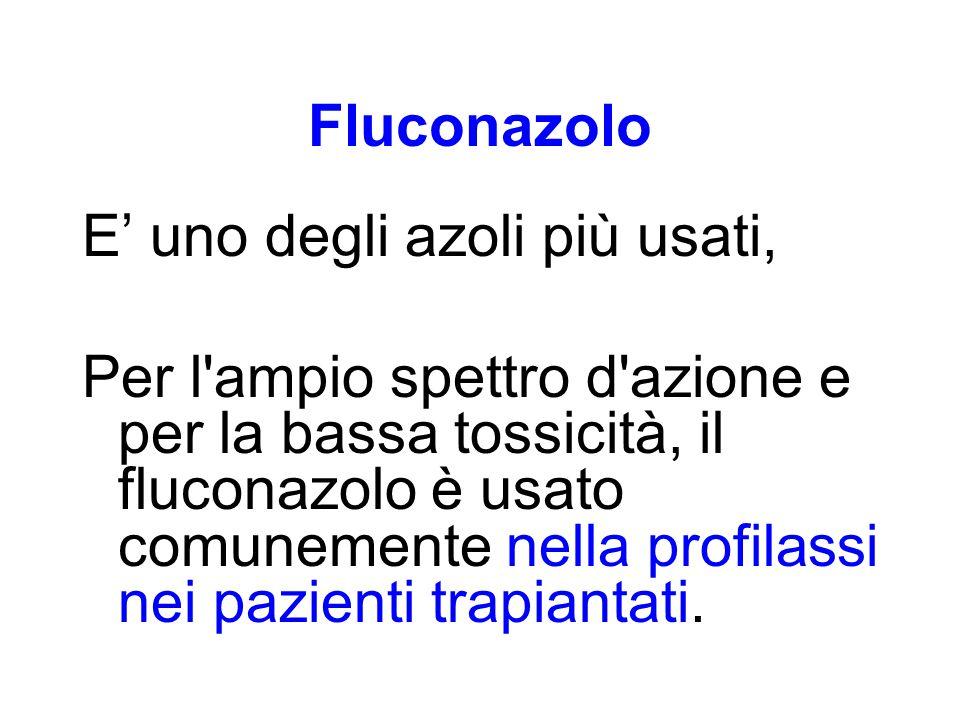 Fluconazolo E' uno degli azoli più usati, Per l'ampio spettro d'azione e per la bassa tossicità, il fluconazolo è usato comunemente nella profilassi n