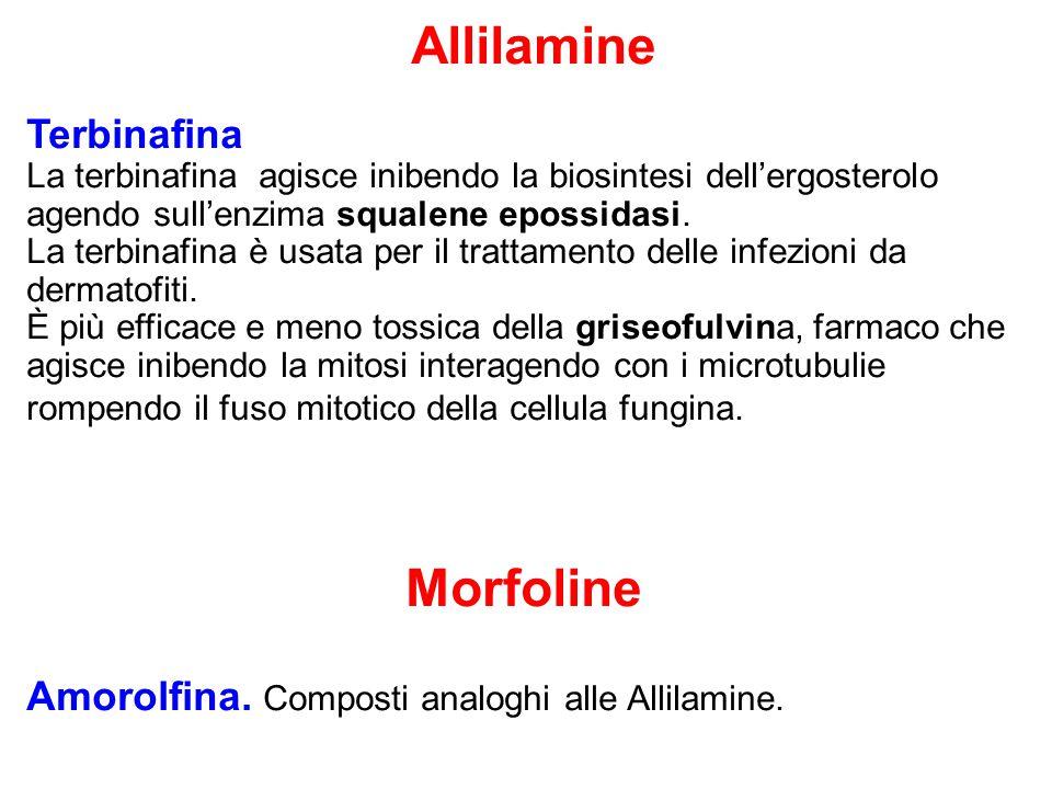 Allilamine Terbinafina La terbinafina agisce inibendo la biosintesi dell'ergosterolo agendo sull'enzima squalene epossidasi. La terbinafina è usata pe