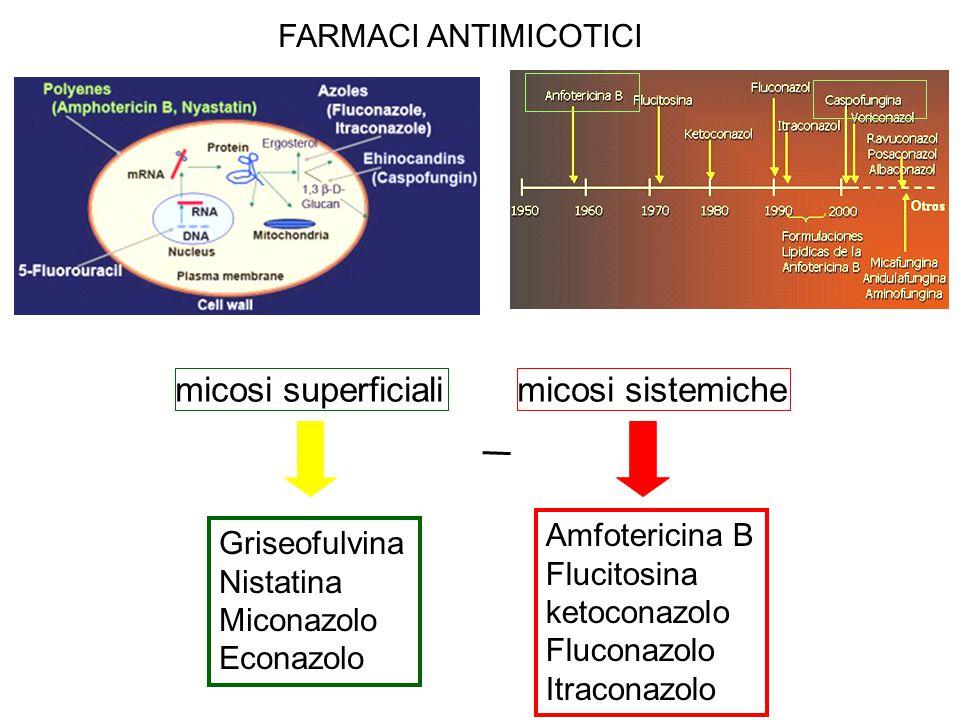 Griseofulvina Nistatina Miconazolo Econazolo Amfotericina B Flucitosina ketoconazolo Fluconazolo Itraconazolo micosi superficialimicosi sistemiche FAR