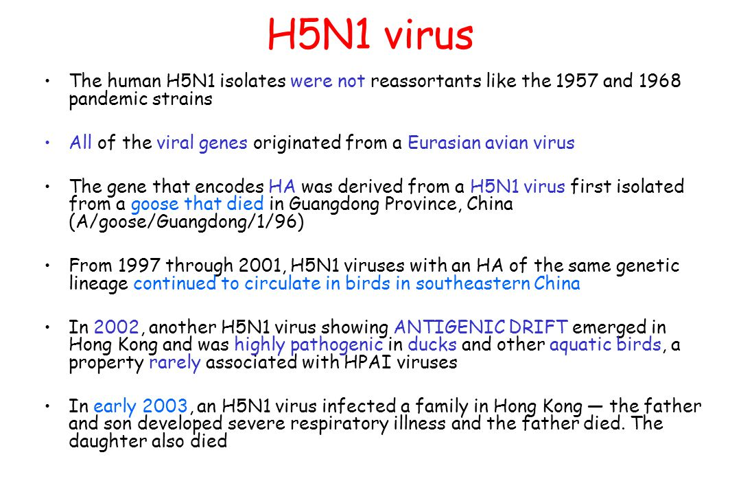H5N1 virus The human H5N1 isolates were not reassortants like the 1957 and 1968 pandemic strains All of the viral genes originated from a Eurasian avian virus The gene that encodes HA was derived from a H5N1 virus first isolated from a goose that died in Guangdong Province, China (A/goose/Guangdong/1/96) From 1997 through 2001, H5N1 viruses with an HA of the same genetic lineage continued to circulate in birds in southeastern China In 2002, another H5N1 virus showing ANTIGENIC DRIFT emerged in Hong Kong and was highly pathogenic in ducks and other aquatic birds, a property rarely associated with HPAI viruses In early 2003, an H5N1 virus infected a family in Hong Kong — the father and son developed severe respiratory illness and the father died.