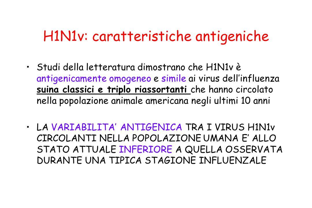 H1N1v: caratteristiche antigeniche Studi della letteratura dimostrano che H1N1v è antigenicamente omogeneo e simile ai virus dell'influenza suina clas