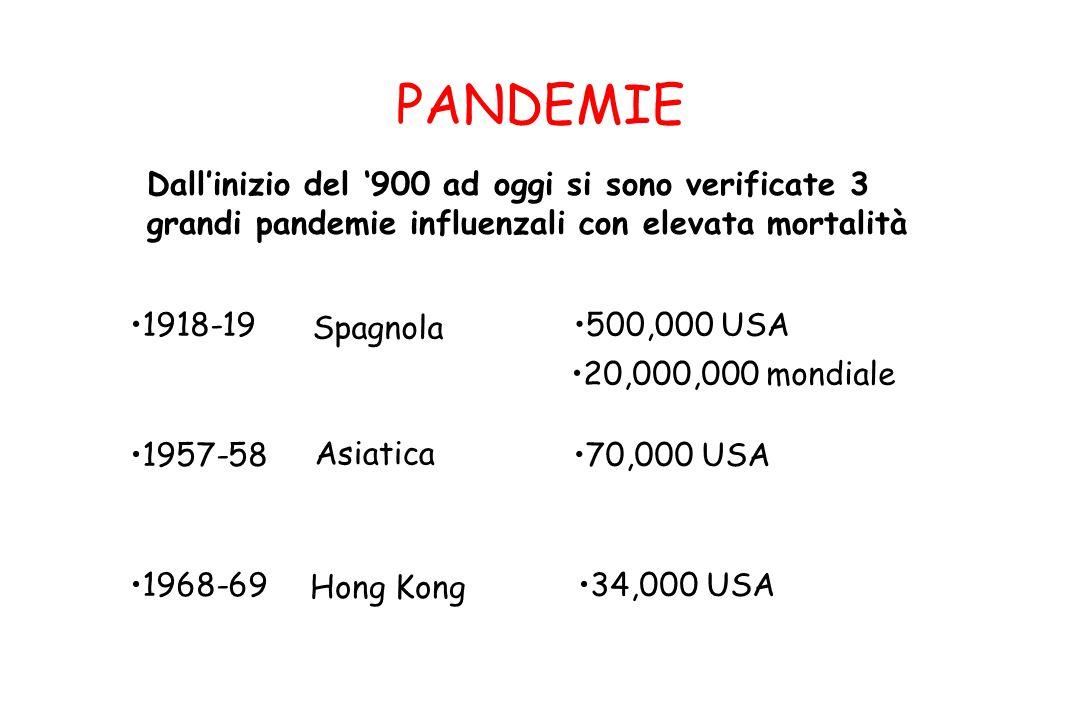 PANDEMIE Dall'inizio del '900 ad oggi si sono verificate 3 grandi pandemie influenzali con elevata mortalità 1918-19 Spagnola 500,000 USA 20,000,000 m