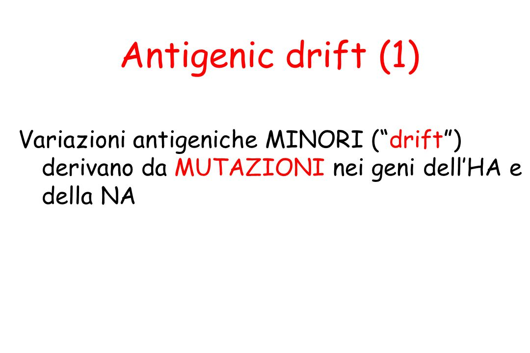 """Variazioni antigeniche MINORI (""""drift"""") derivano da MUTAZIONI nei geni dell'HA e della NA Antigenic drift (1)"""