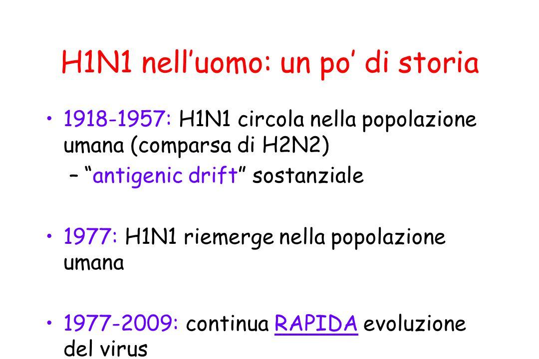 """H1N1 nell'uomo: un po' di storia 1918-1957: H1N1 circola nella popolazione umana (comparsa di H2N2) –""""antigenic drift"""" sostanziale 1977: H1N1 riemerge"""
