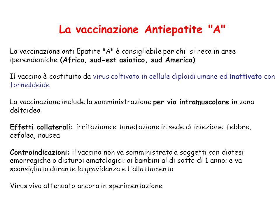 La vaccinazione Antiepatite