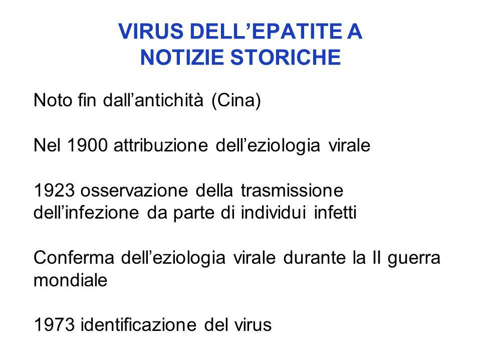 VIRUS DELL'EPATITE A Caratteristiche strutturali PICORNAVIRUS (hepatovirus) Virus icosaedrico nudo RNA a singolo filamento
