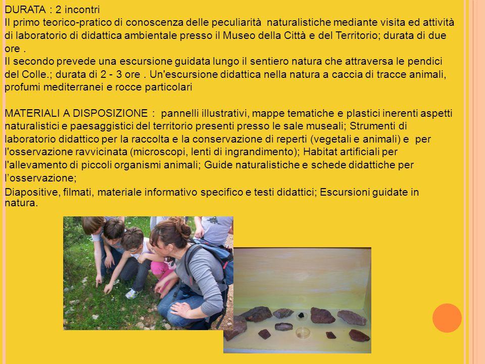 DURATA : 2 incontri Il primo teorico-pratico di conoscenza delle peculiarità naturalistiche mediante visita ed attività di laboratorio di didattica ambientale presso il Museo della Città e del Territorio; durata di due ore.
